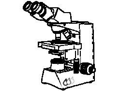 Mikroskopierbedarf